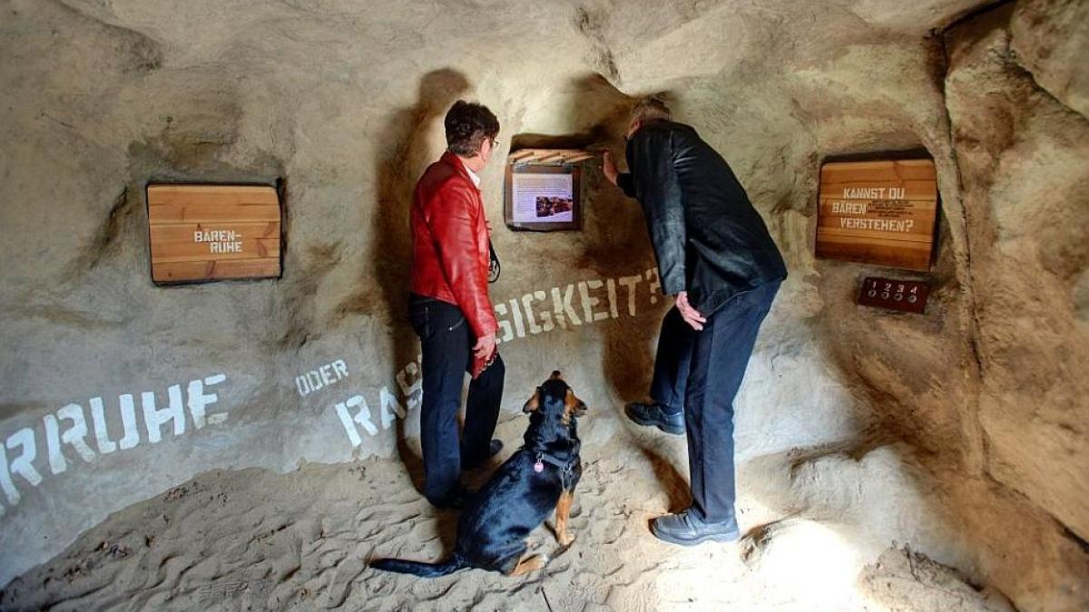 """Ausstellungsstation """"Bärenhöhle"""" - BÄRENWALD Müritz"""